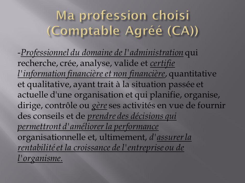 Ma profession choisi (Comptable Agréé (CA))