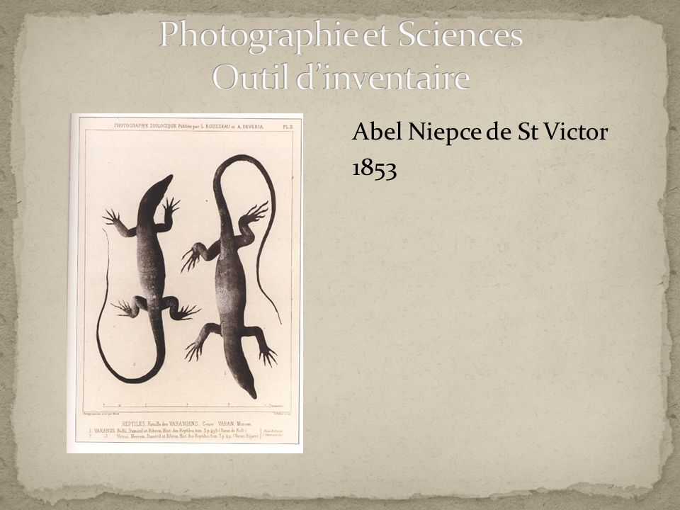 Photographie et Sciences Outil d'inventaire