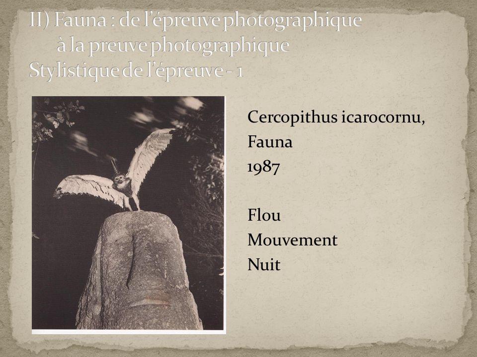 II) Fauna : de l'épreuve photographique à la preuve photographique Stylistique de l'épreuve - 1