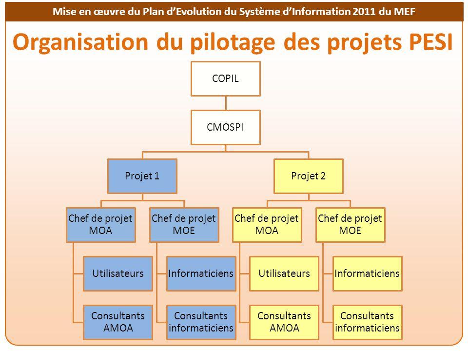 Organisation du pilotage des projets PESI