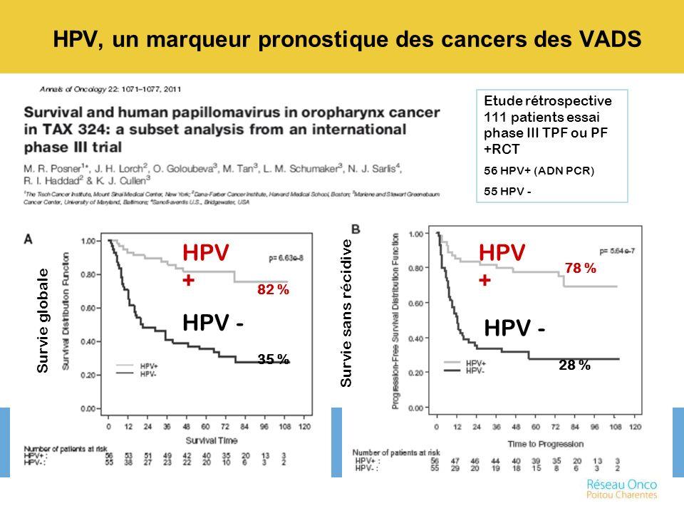 HPV, un marqueur pronostique des cancers des VADS