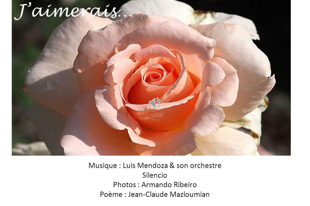 J'aimerais… Musique : Luis Mendoza & son orchestre Silencio