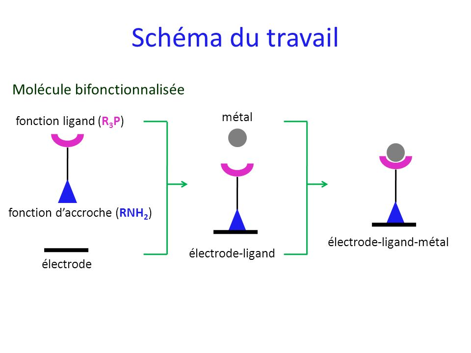 Schéma du travail Molécule bifonctionnalisée métal