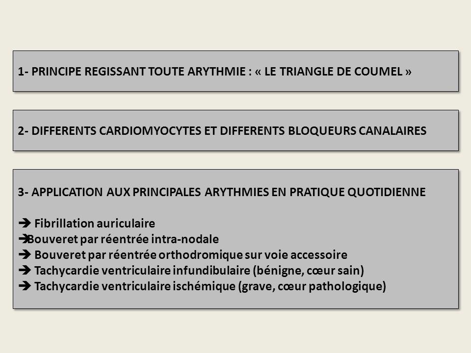 1- PRINCIPE REGISSANT TOUTE ARYTHMIE : « LE TRIANGLE DE COUMEL »