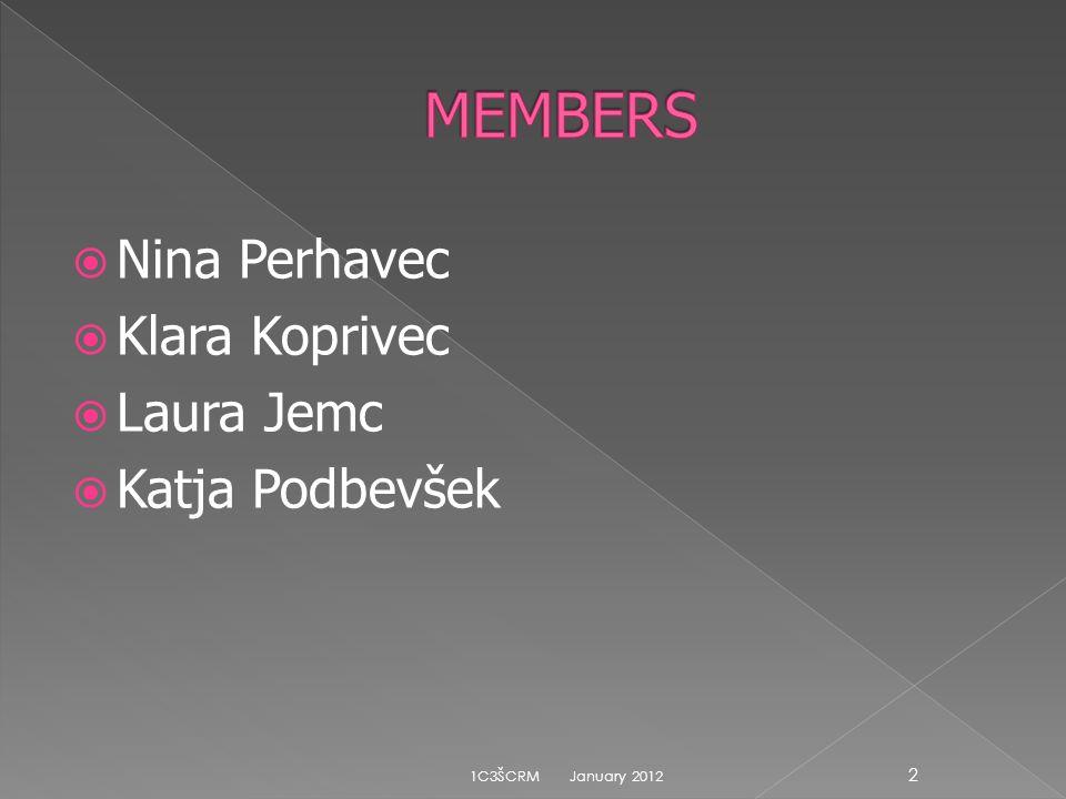 MEMBERS Nina Perhavec Klara Koprivec Laura Jemc Katja Podbevšek