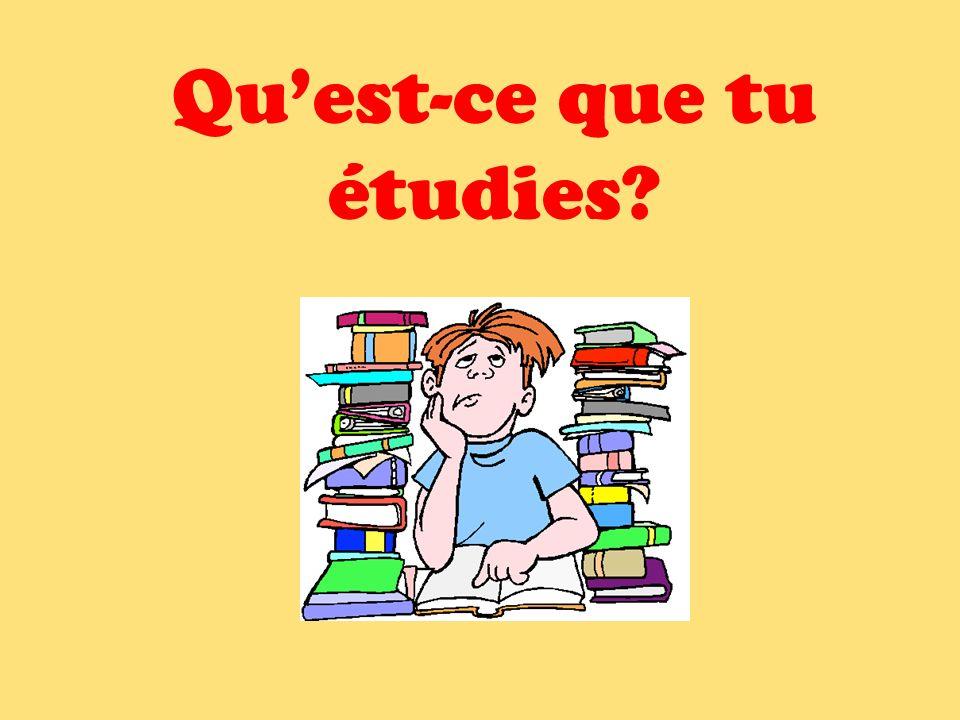 Qu'est-ce que tu étudies