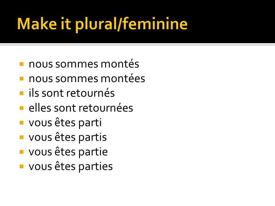 Make it plural/feminine