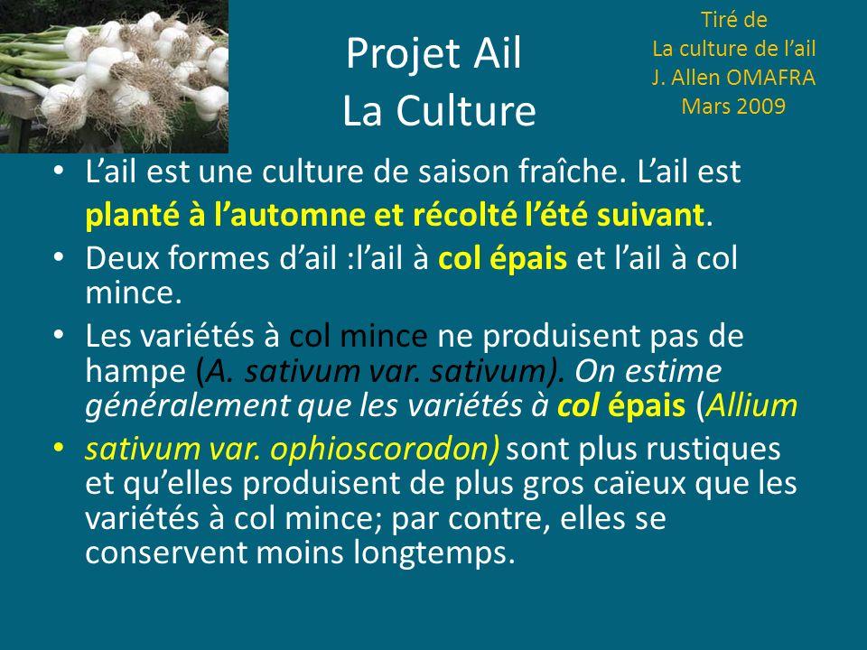 Tiré de La culture de l'ail. J. Allen OMAFRA Mars 2009. Projet Ail La Culture. L'ail est une culture de saison fraîche. L'ail est.