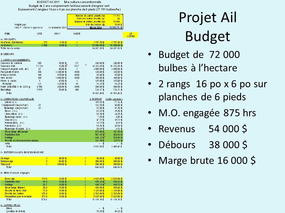 Projet Ail Budget Budget de 72 000 bulbes à l'hectare