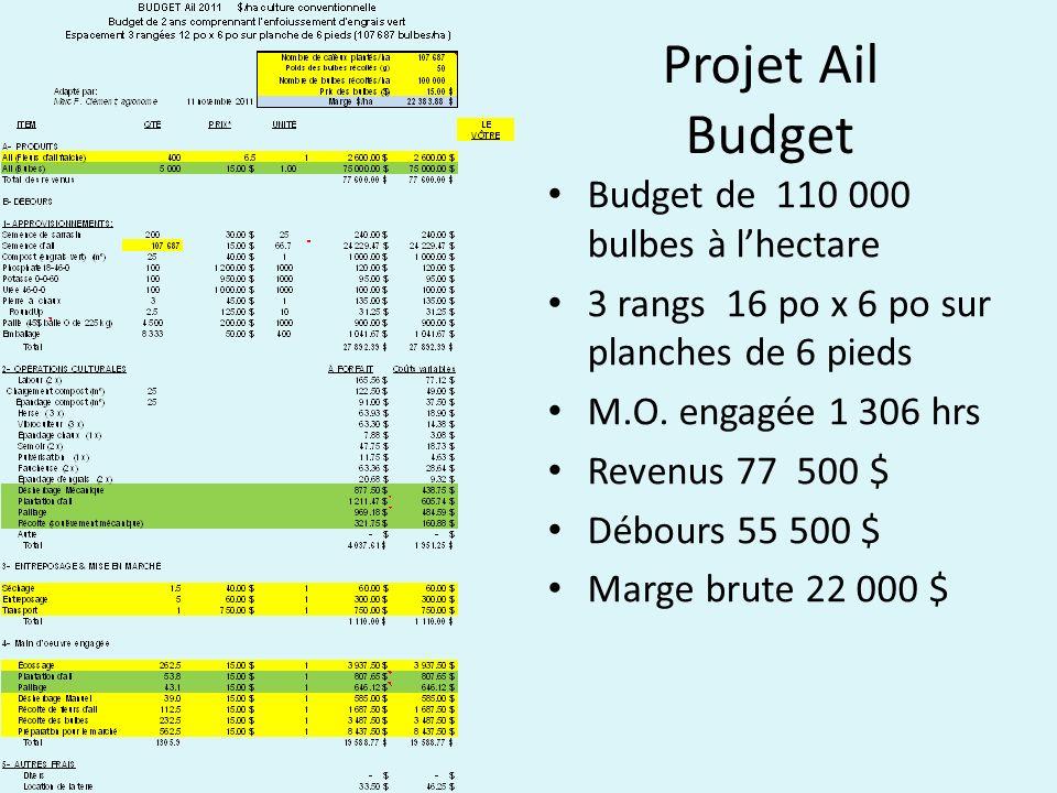 Projet Ail Budget Budget de 110 000 bulbes à l'hectare
