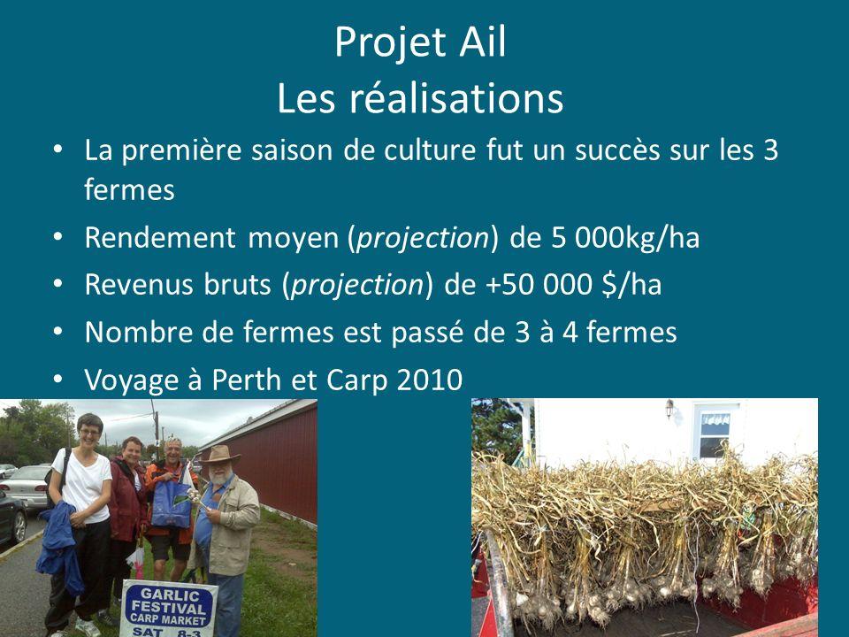 Projet Ail Les réalisations