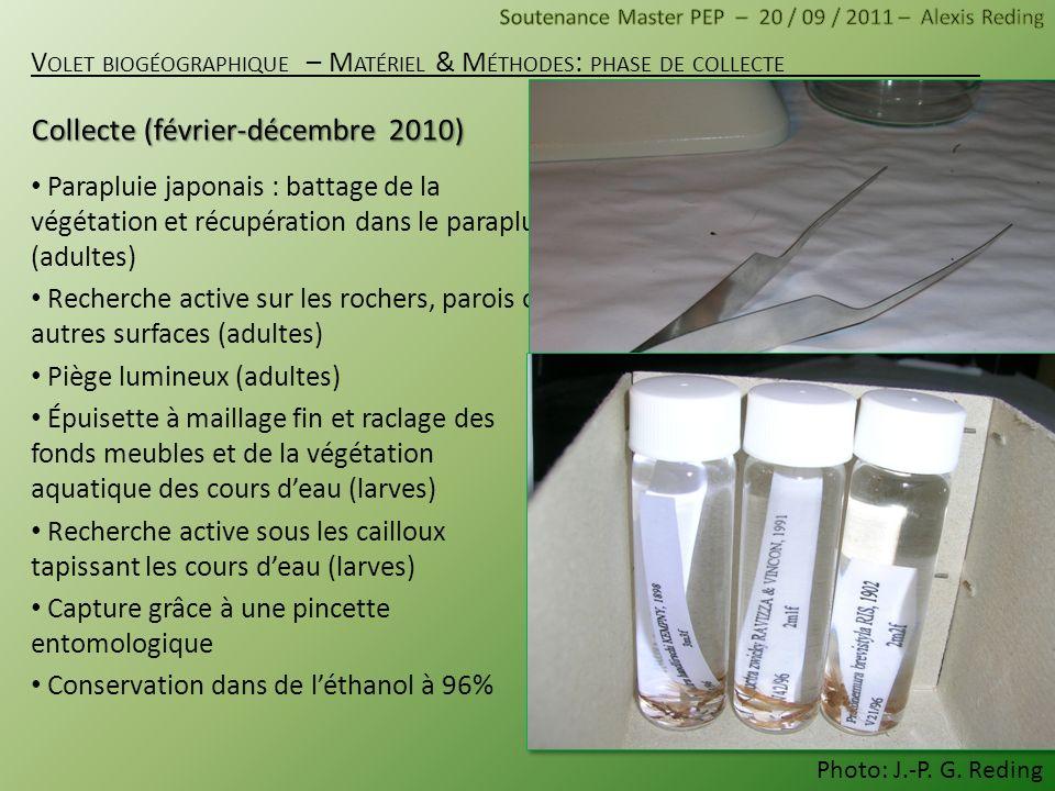Collecte (février-décembre 2010)