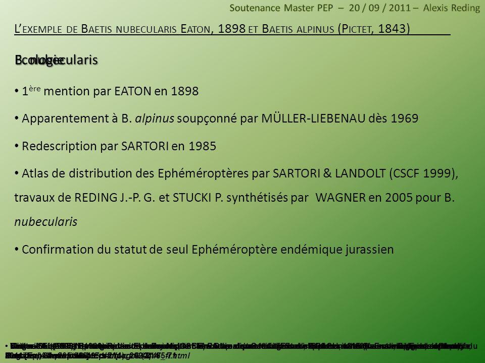 B. nubecularis Ecologie