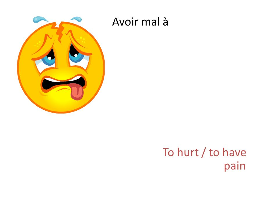 Avoir mal à To hurt / to have pain