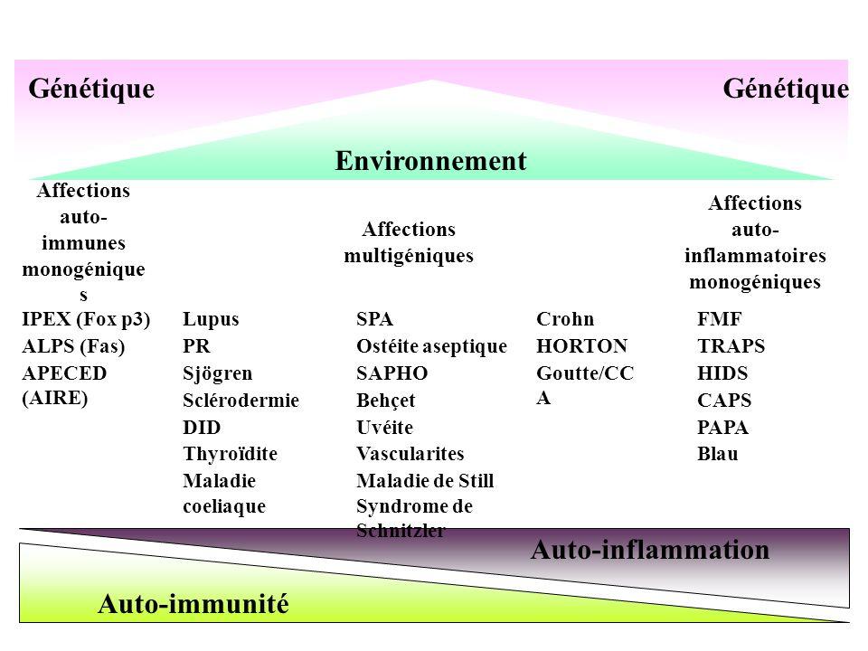 Génétique Génétique Environnement Auto-inflammation Auto-immunité