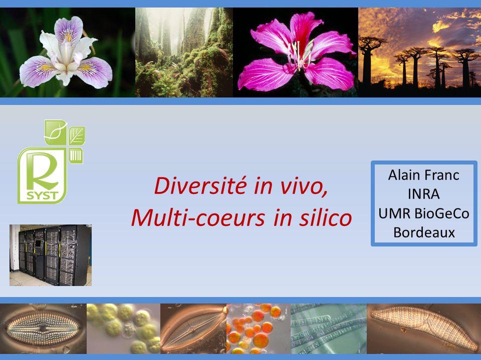 Diversité in vivo, Multi-coeurs in silico