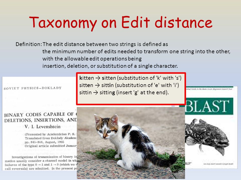 Taxonomy on Edit distance