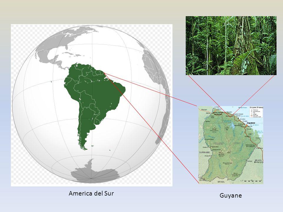 America del Sur Guyane