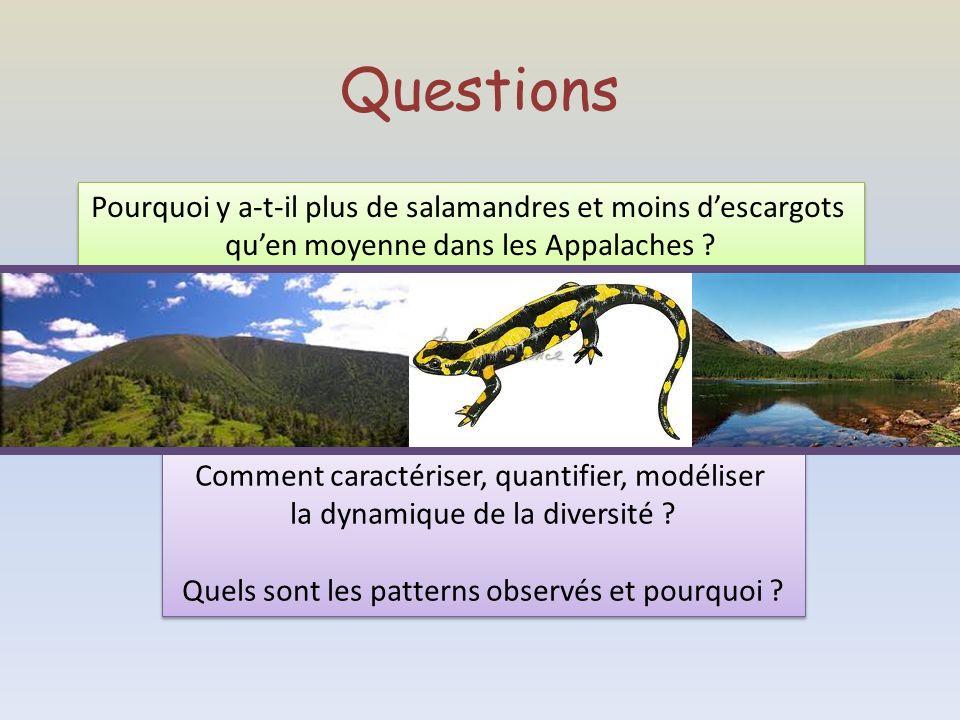 Questions Pourquoi y a-t-il plus de salamandres et moins d'escargots