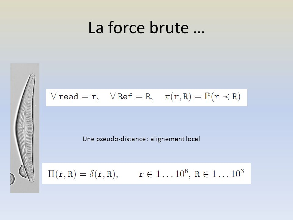 La force brute … Une pseudo-distance : alignement local