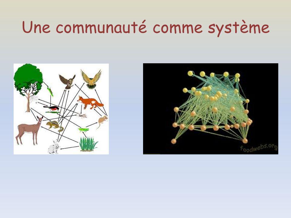 Une communauté comme système