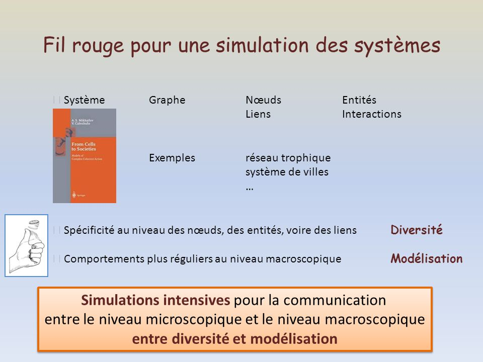 Fil rouge pour une simulation des systèmes