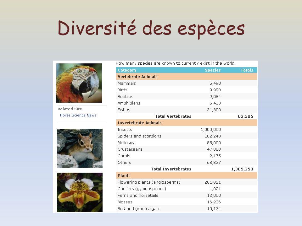 Diversité des espèces