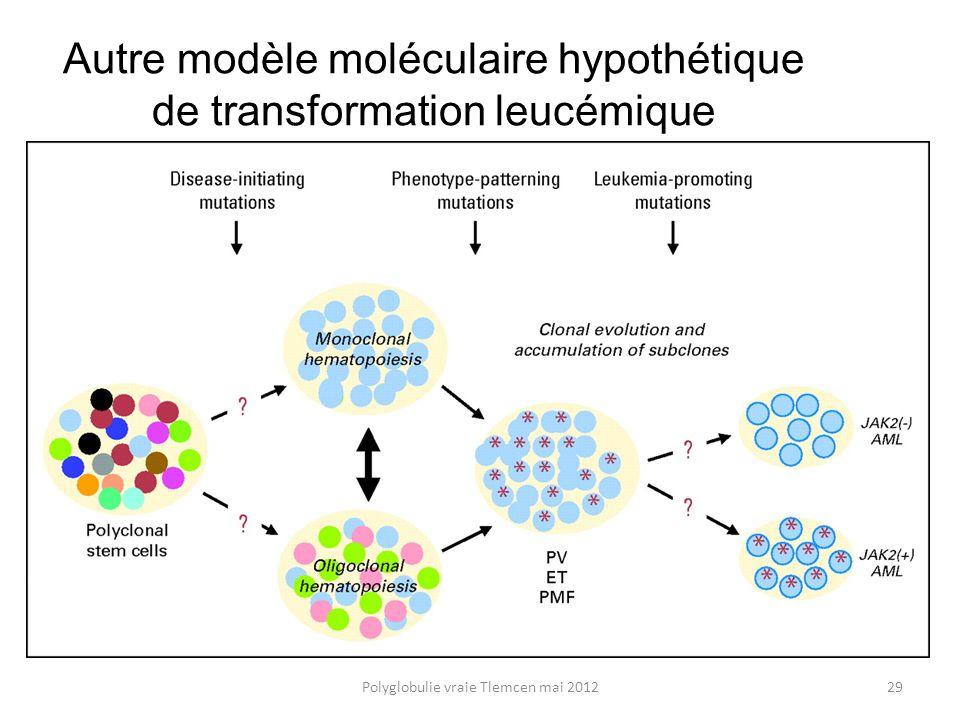 Autre modèle moléculaire hypothétique de transformation leucémique