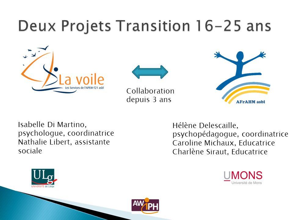 Deux Projets Transition 16-25 ans