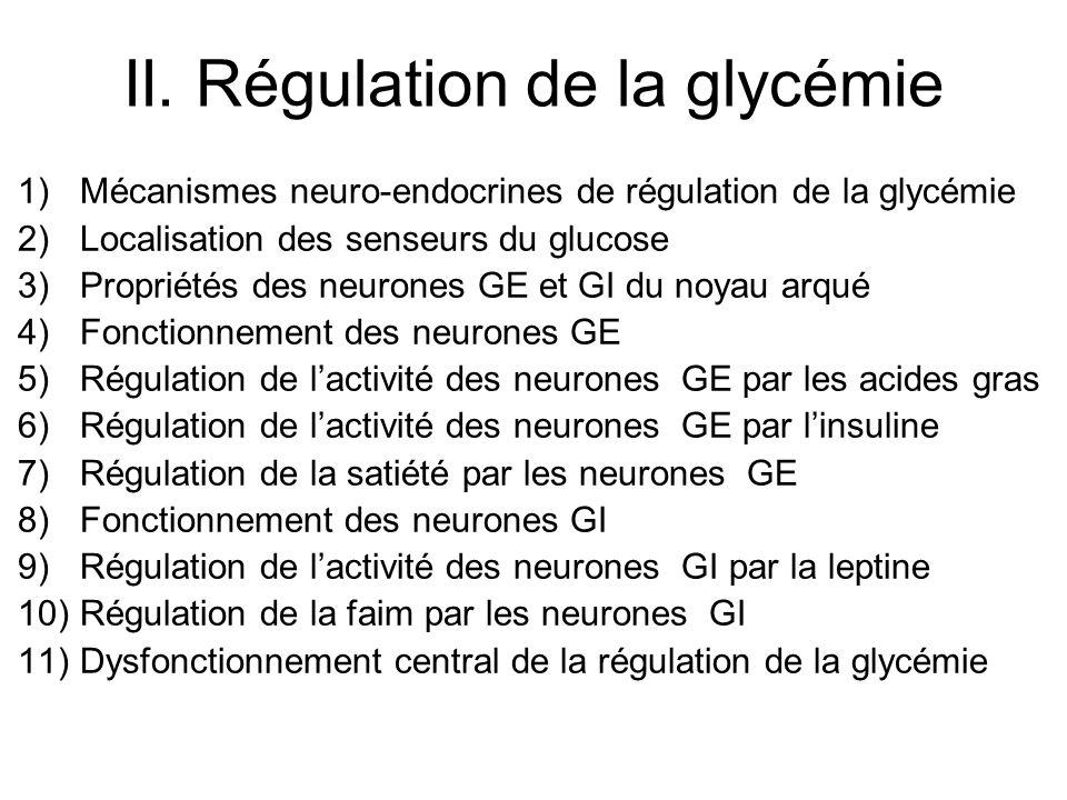 II. Régulation de la glycémie