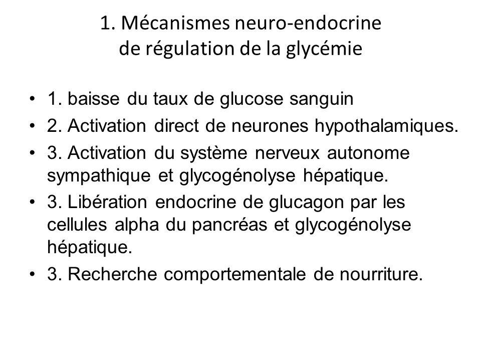 1. Mécanismes neuro-endocrine de régulation de la glycémie