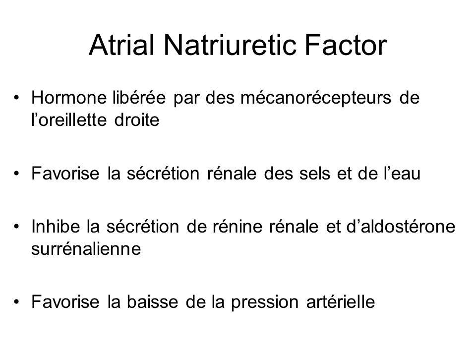 Atrial Natriuretic Factor