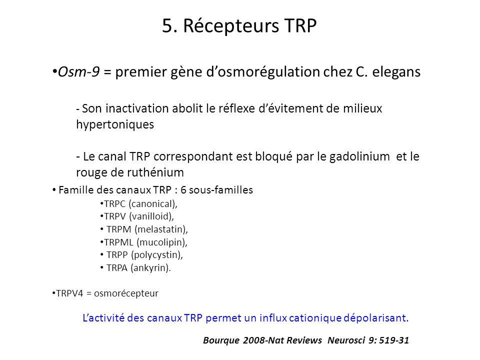 5. Récepteurs TRP Osm-9 = premier gène d'osmorégulation chez C. elegans. Son inactivation abolit le réflexe d'évitement de milieux hypertoniques.