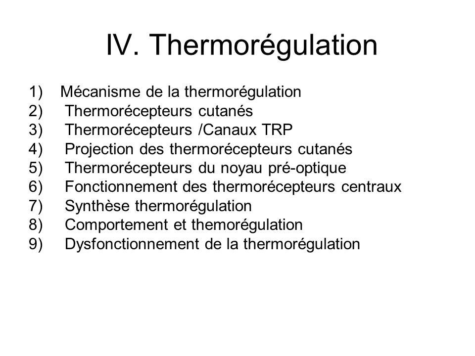IV. Thermorégulation Mécanisme de la thermorégulation