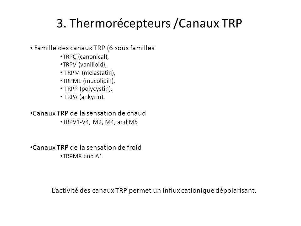 3. Thermorécepteurs /Canaux TRP