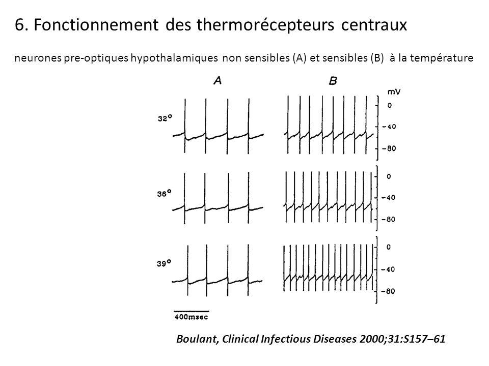 6. Fonctionnement des thermorécepteurs centraux