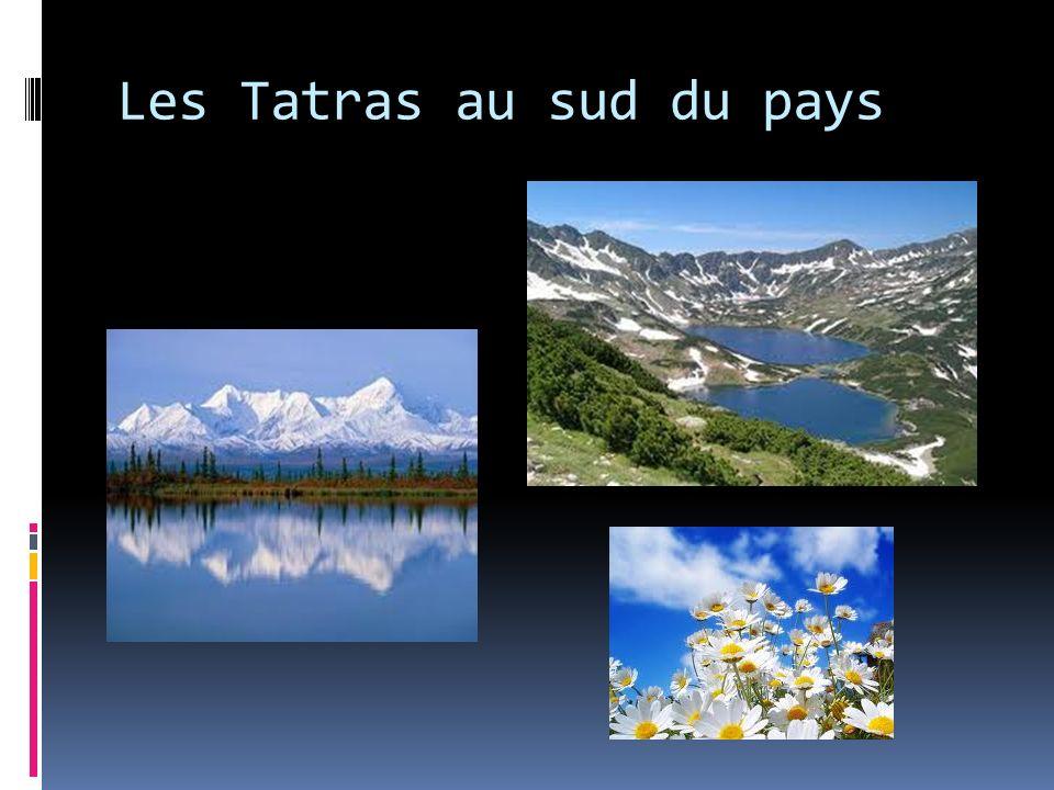 Les Tatras au sud du pays