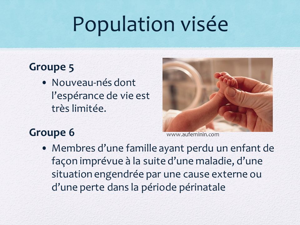 Population visée Groupe 5 Groupe 6