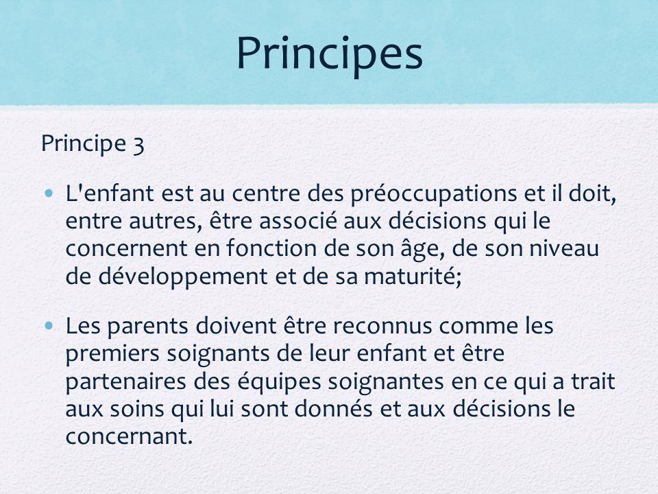 Principes Principe 3.