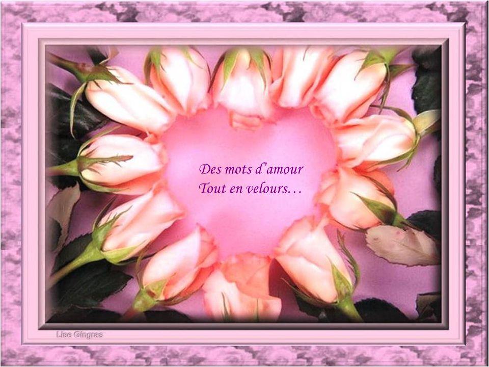 Des mots d'amour Tout en velours…