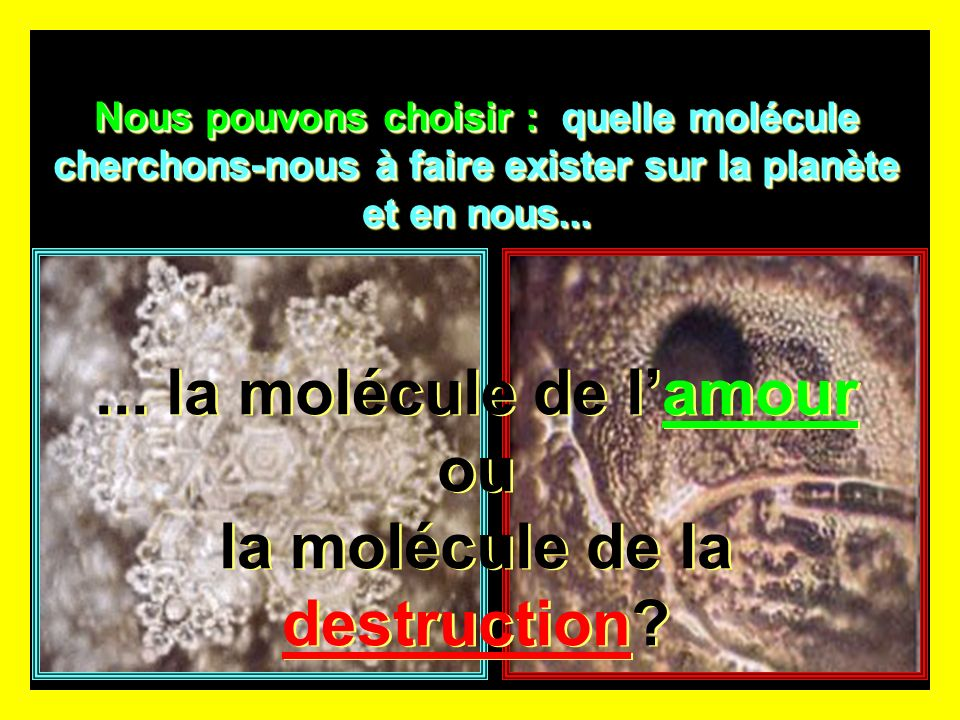 ... la molécule de l'amour ou la molécule de la destruction