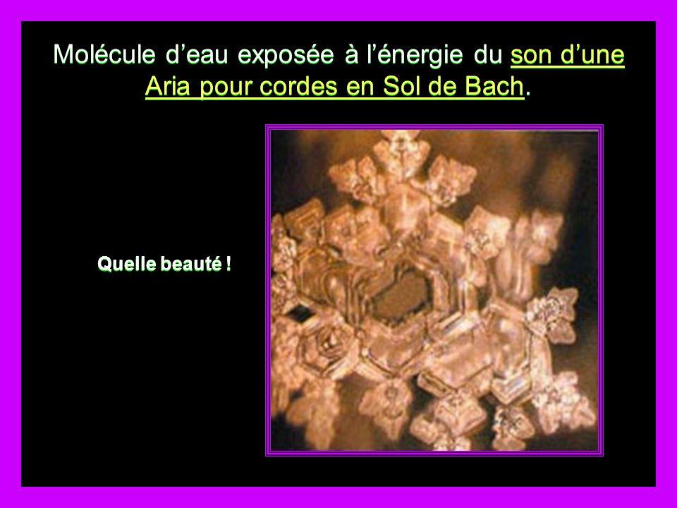 Molécule d'eau exposée à l'énergie du son d'une Aria pour cordes en Sol de Bach.