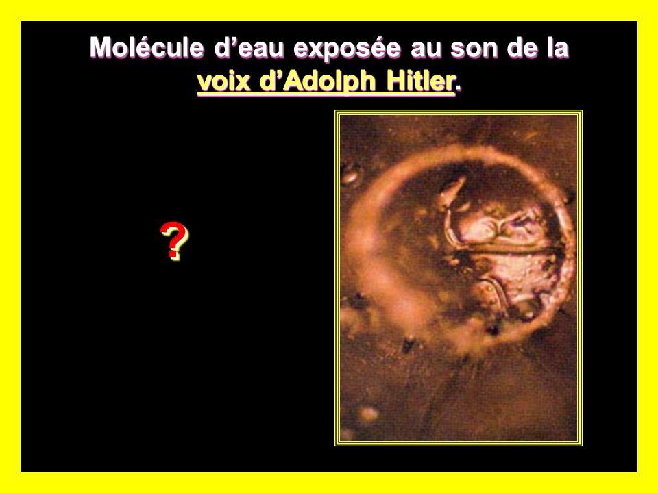 Molécule d'eau exposée au son de la voix d'Adolph Hitler.