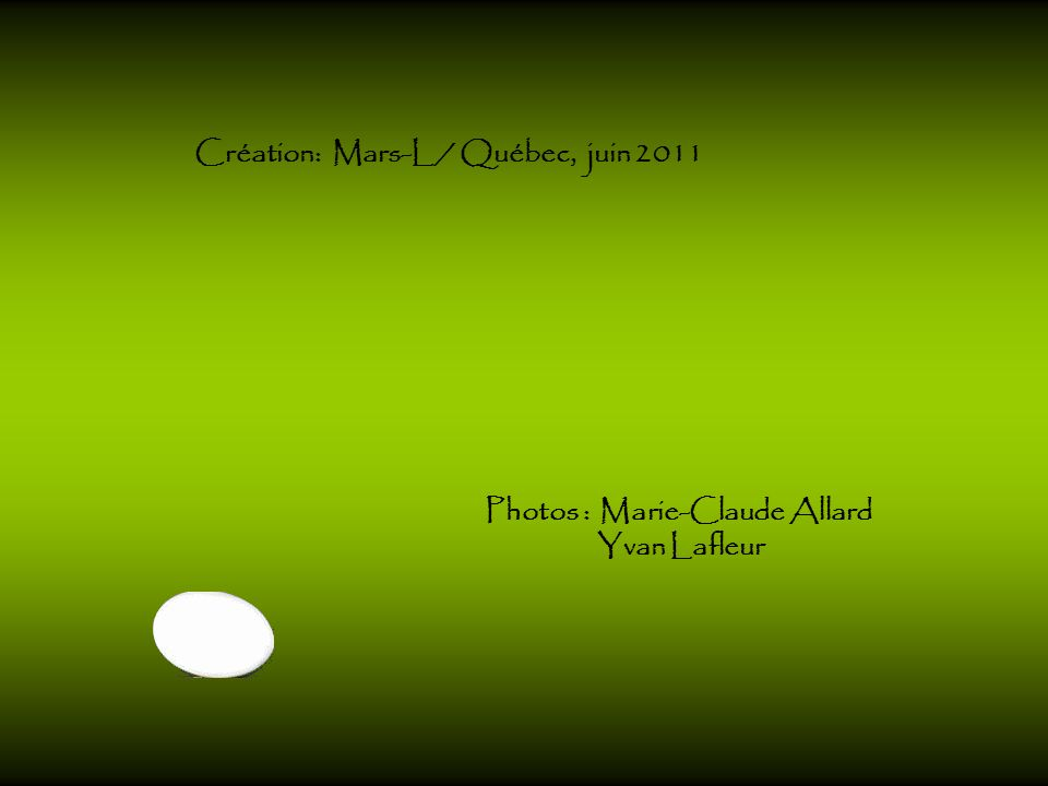 Création: Mars-L / Québec, juin 2011