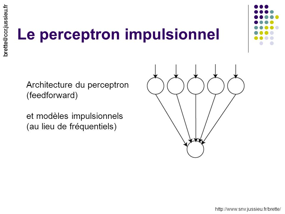 Le perceptron impulsionnel