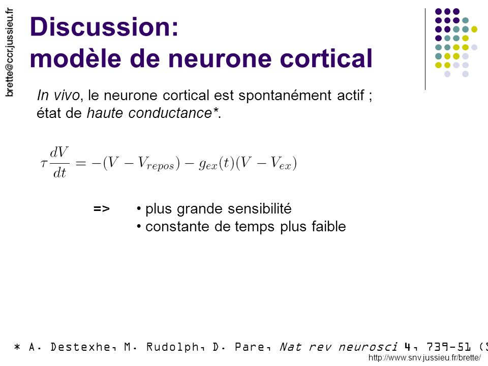 Discussion: modèle de neurone cortical