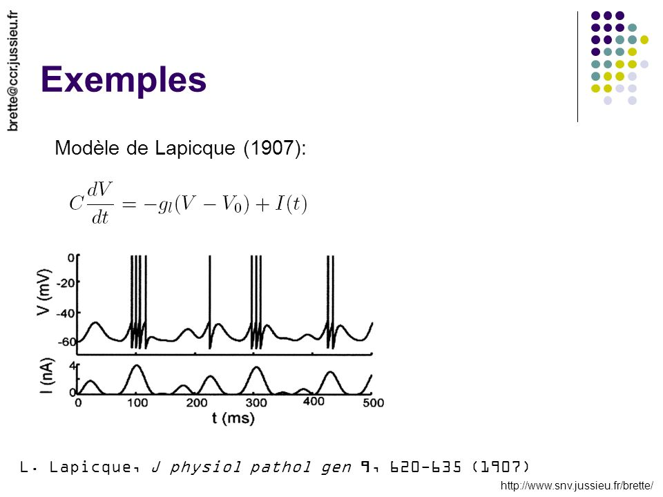 Exemples Modèle de Lapicque (1907):