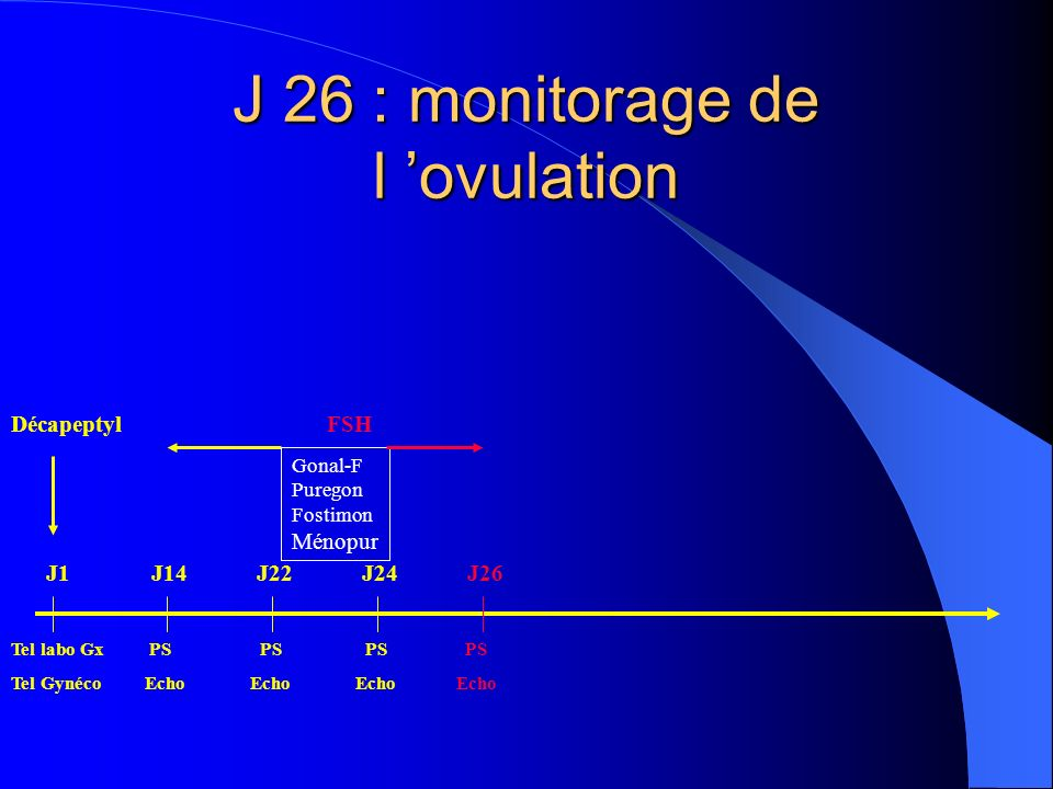 J 26 : monitorage de l 'ovulation