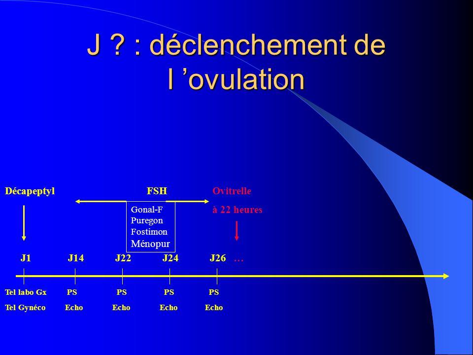 J : déclenchement de l 'ovulation