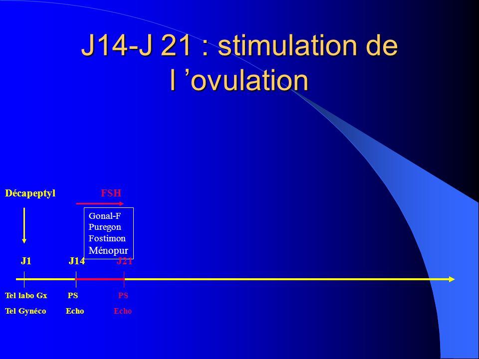 J14-J 21 : stimulation de l 'ovulation